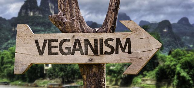 The Benefits Of Going Vegan
