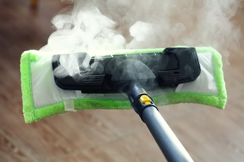 Getting rid of dust mites with steam cleaners