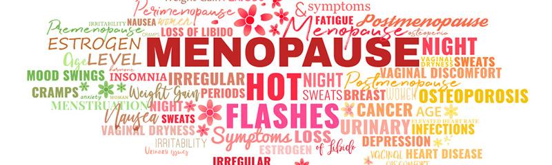 Menopause Mediator: Premarin Vaginal Cream