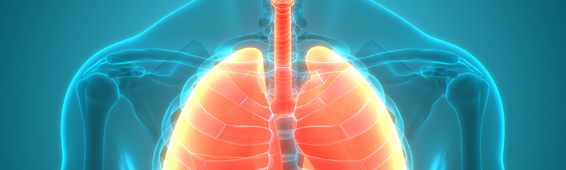 Corral COPD: Your Spiriva Generic Alternative
