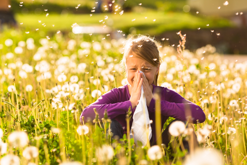 Summer Allergies: Causes and Treatments