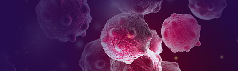 Preventing Growth of Cancer Cells - Gleevec