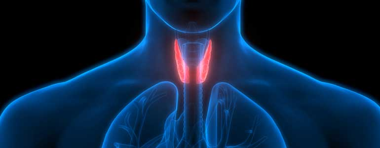 Why Does Hypothyroidism Occur?